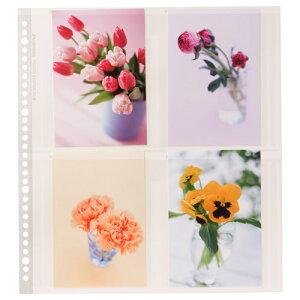 ハクバ HAKUBA フォトアルバム SF-6 プリントファイル 写真サイズ:ポストカード 替台紙 4977187520965