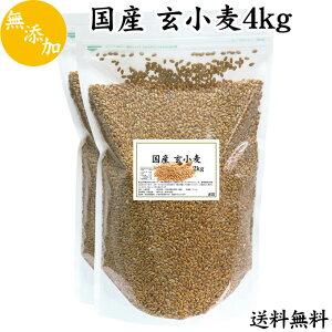 国産 玄小麦 4kg(2kg×2袋) 送料無料 小麦粒 ふすま フスマ 小麦の粒 ロースト 雑穀 胚乳 胚芽 未精製 まるごと小麦 製菓 製パン 材料 料理 炊き込みご飯 栄養満点 ビタミン B1 B6 B12 B群 チャック