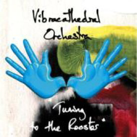 Vibracathedral Orchestra / Tuning To The Rooster 輸入盤 【CD】