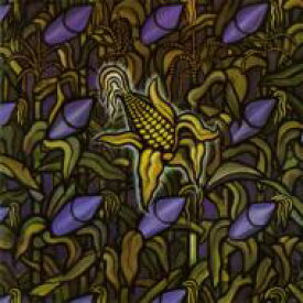 Bad Religion バッドリリジョン / Against The Grain 輸入盤 【CD】