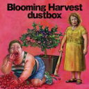 dustbox ダストボックス / Blooming Harvest 【CD】