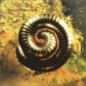 Nine Inch Nails ナインインチネイルズ / Closer To God 輸入盤 【CDS】