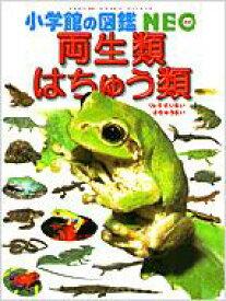 両生類・はちゅう類 小学館の図鑑NEO / 松井正文 【図鑑】