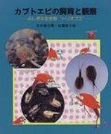 カブトエビの飼育と観察 ふしぎな生き物 トリオプス やさしい科学 / 谷本雄治 【全集・双書】