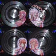 【送料無料】 Tool トゥール / Lateralus (2枚組アナログレコード) 【LP】