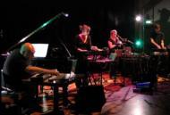 Bill Wells / Annie Whitehead / Stefan Schneider / Barbara Mor / Paper Of Pins 【LP】
