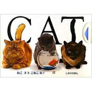 CAT ねこネコこねこね! しかけえほん / マシュー・ヴァン・フリート 【絵本】