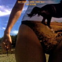 """Bonnie Prince Billy ボニープリンスビリー / I Must Be Blind / Life In Muscle (10"""") 【12..."""