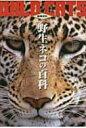 【送料無料】 野生ネコの百科 動物百科 / 今泉忠明 【全集・双書】