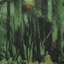 Promise Ring / Wood / Water 輸入盤 【CD】