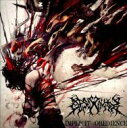 Desecravity / Implicit Obedience 輸入盤 【CD】