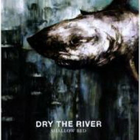 Dry The River / Shallow Bed 輸入盤 【CD】