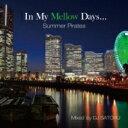 Fingazz フィンガズ / In My Mellow Days〜summer Pirates〜 Mixed By Dj Satoru 【CD】