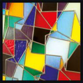 【送料無料】 Hot Chip ホットチップ / In Our Heads (Expanded Edition) 輸入盤 【CD】