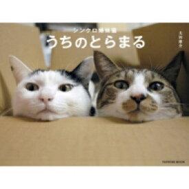 シンクロ姉妹猫 うちのとらまる (タツミムック) / 太田康介 【ムック】