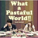 【送料無料】 鷲崎健 / What a Pastaful World 【CD】
