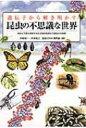 【送料無料】 遺伝子から解き明かす昆虫の不思議な世界 地球上で最も繁栄する生き物の起源から進化の5億年 / 大場裕一…