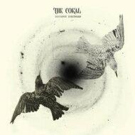 Coral コラル / Distance Inbetween 【LP】