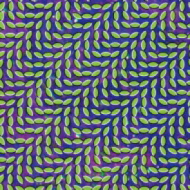 Animal Collective アニマルコレクティブ / Merriweather Post Pavilion 【CD】