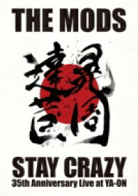 【送料無料】 THE MODS モッズ / STAY CRAZY 【DVD】