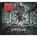 【送料無料】 MR.BIG ミスタービッグ / Defying Gravity 【CD】