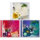 【送料無料】 SOL (Tae Yang BIGBANG) ソルテヤン / 3集: WHITE NIGHT (ランダムカバー・バージョン) 【CD】
