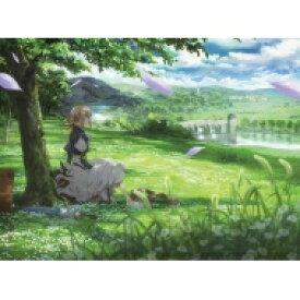 【送料無料】 ヴァイオレット・エヴァーガーデン (2) 【DVD】