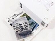 【送料無料】 サカナクション / 魚図鑑 【完全生産限定プレミアムBOX】(3CD+魚大図鑑) 【CD】