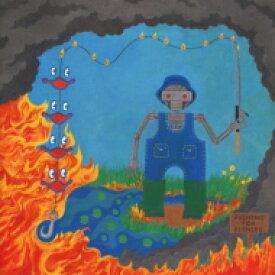 【送料無料】 King Gizzard & The Lizard Wizard / Fishing For Fishies 輸入盤 【CD】