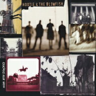 Hootie & The Blowfish / Cracked Rear View 【LP】