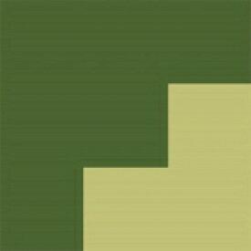 【送料無料】 FLOPPY フロッピー / 2045survivor 【CD】