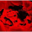 コドモドラゴン / アノニマス 【Ctype】 【CD Maxi】