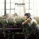 【送料無料】 上野山英里 / Ciconia 【CD】
