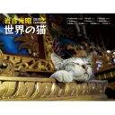岩合光昭世界の猫カレンダー 2020 【ムック】