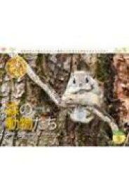 カレンダー2020 太田達也セレクション 森の動物たち Tiny Story in the Forests 【本】