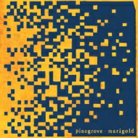 Pinegrove / Marigold 【LP】