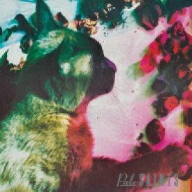 Pale Saints ペイルセインツ / Comforts Of Madness (30周年記念盤)(アナログレコード) 【LP】
