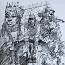 Little Simz / Curious Tale Of Trials & Persons 【LP】