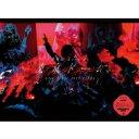 【送料無料】 欅坂46 / 欅坂46 LIVE at 東京ドーム 〜ARENA TOUR 2019 FINAL〜 【初回生産限定盤】(2DVD) 【DVD】