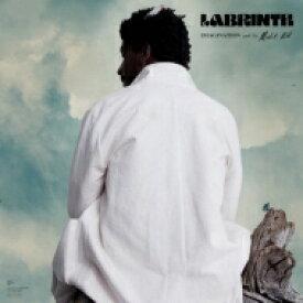 【送料無料】 Labrinth / Imagination & The Misfit Kid 【LP】