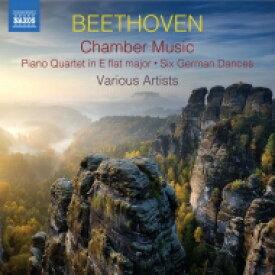 【送料無料】 Beethoven ベートーヴェン / 室内楽作品集〜行進曲集、ピアノ四重奏曲、6つのメヌエット、他 IUウィンド・アンサンブル、他(2CD) 輸入盤 【CD】