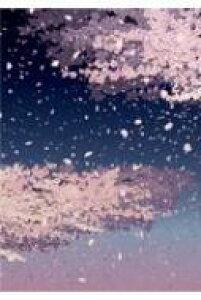 夜桜 開運御朱印帳 大判 【本】