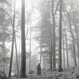 【送料無料】 Taylor Swift テイラースウィフト / Folklore (1. The In The Trees Edition Deluxe CD) 輸入盤 【CD】