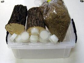 Qbox30産卵セット