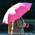 【大きめで濡れにくい】ソーシャルディスタンスにも!おしゃれなレディース傘のおすすめは?