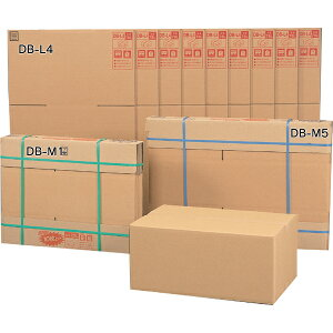 【10枚セット】 段ボールボックス(ダンボール) DB-M1 【幅44×奥行32×高さ23.6(cm)】 アイリスオーヤマ(ダンボール箱・梱包資材・引越しや衣替えに便利・収納家具、食器、家電の整理に)