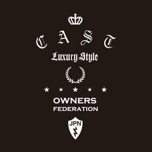 カッティングステッカー ダイハツ(DAIHATSU)CAST キャスト dressup 車 カー ステッカー かっこいい おしゃれ アクセサリー シール ガラス オーダーメイド 転写[◆]