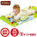 Yookidoo(ユーキッド) ながめてプレイマット (ベビー 赤ちゃん 子供 出産祝い ギフト プレゼント 男の子 女の子 お祝い 送料無料)
