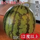 スイカ 熊本 甘い 大玉 果物 高糖度 フルーツ ギフト 人気商品 お供え 父の日 お中元 糖度12度以上 糖度12度 産地直送…
