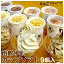 産地出荷「函館牛乳 カップソフト9個入」冷凍 送料込